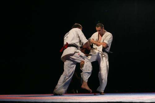 4_euro2008-7.JPG